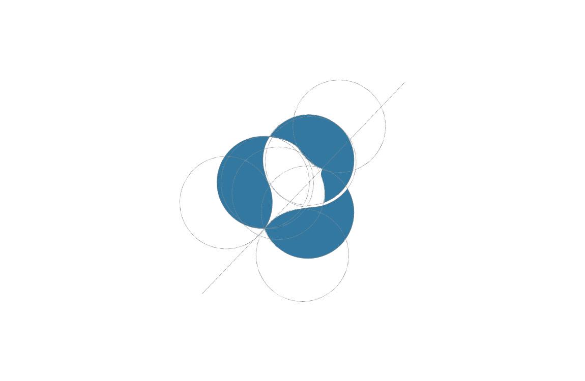 Linee di costruzione logo FaceXP