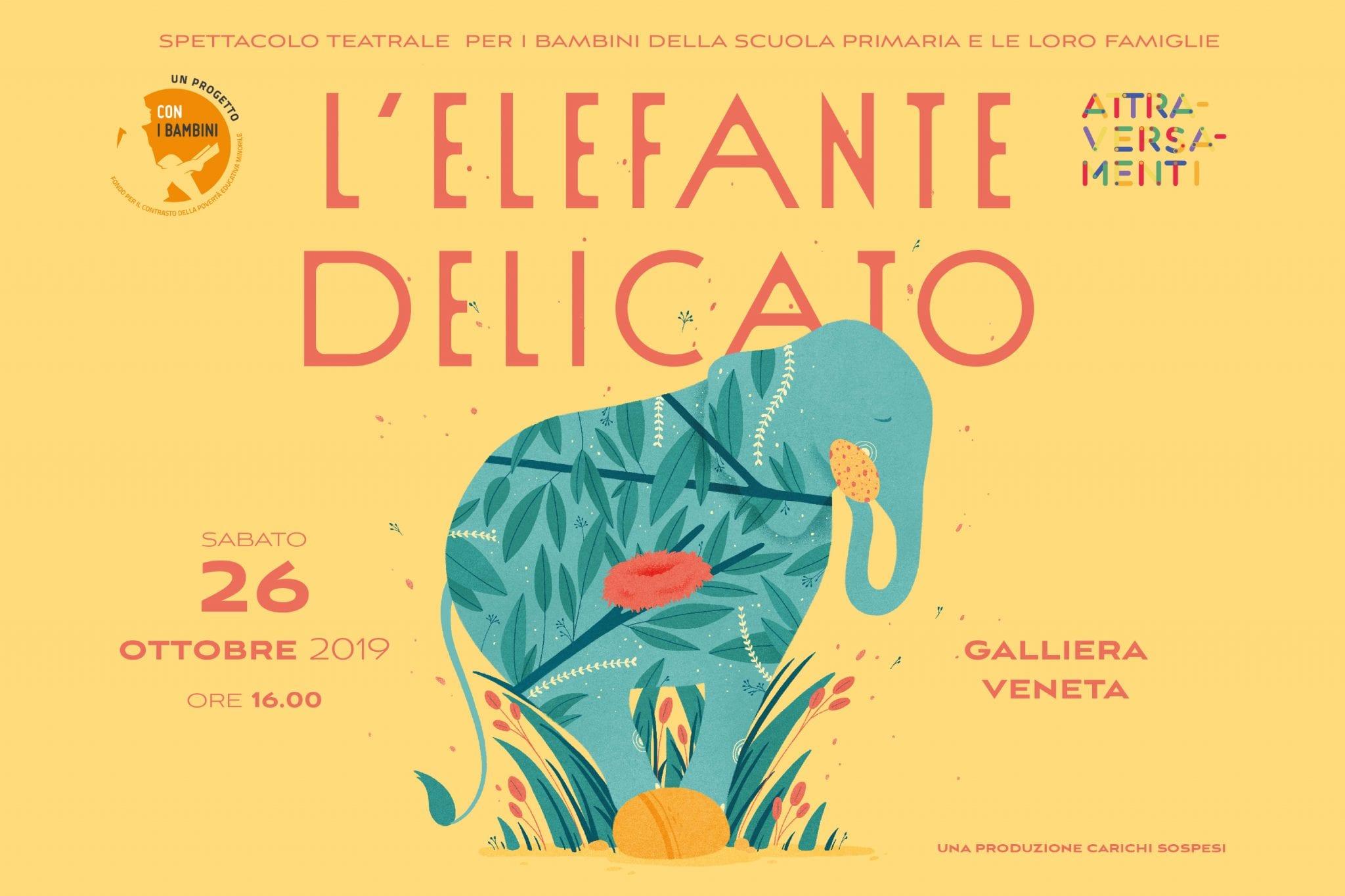 Elefante delicato-post 2-min